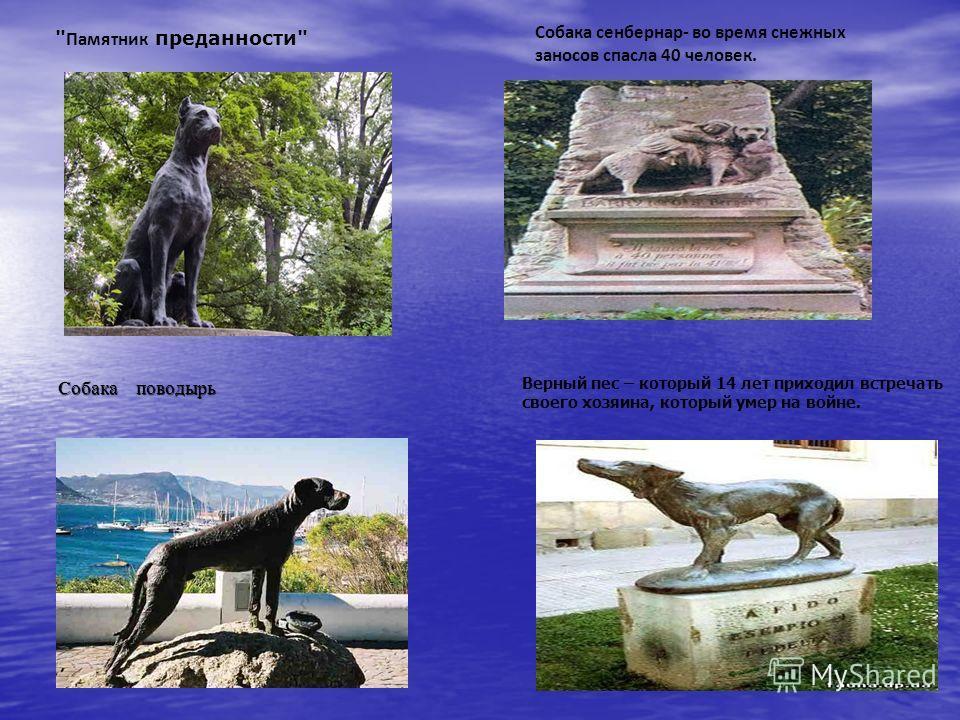 Верный пес – который 14 лет приходил встречать своего хозяина, который умер на войне.  Памятник преданности Собака сенбернар- во время снежных заносов спасла 40 человек. Собака поводырь