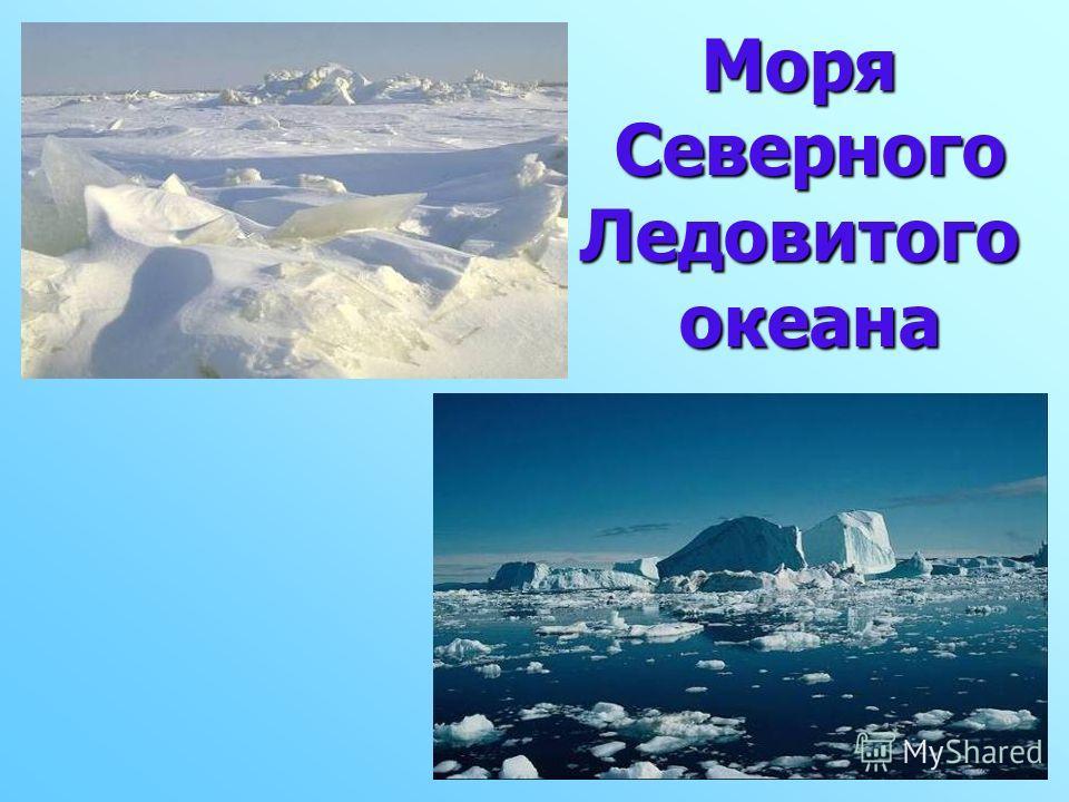 Моря Северного Ледовитого Северного Ледовитого океана океана