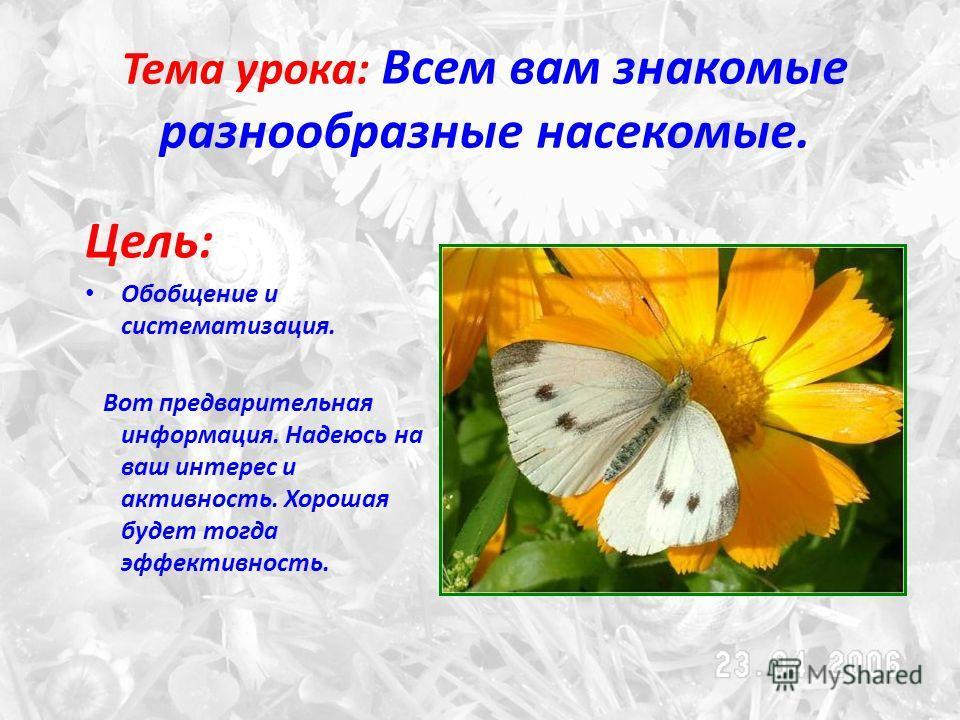 Тема урока: Всем вам знакомые разнообразные насекомые. Цель: Обобщение и систематизация. Вот предварительная информация. Надеюсь на ваш интерес и активность. Хорошая будет тогда эффективность.