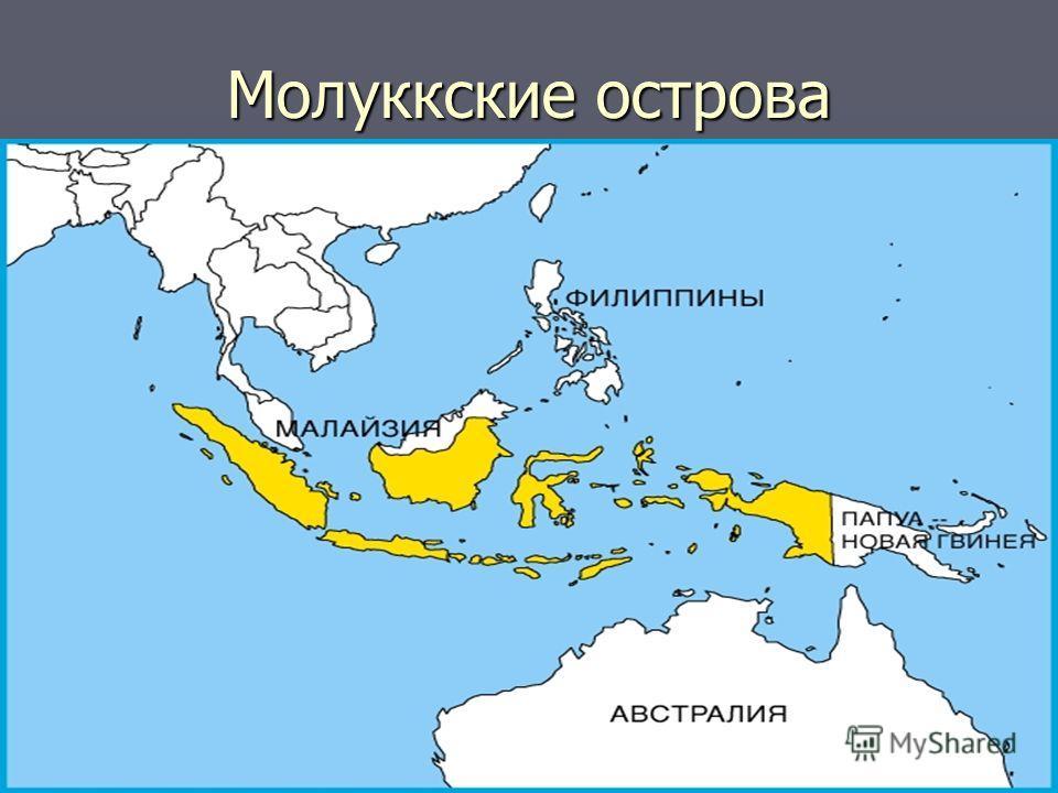 Молуккские острова