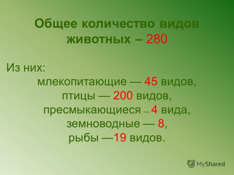 Общее количество видов животных – 280 Из них: млекопитающие 45 видов, птицы 200 видов, пресмыкающиеся 4 вида, земноводные 8, рыбы 19 видов.