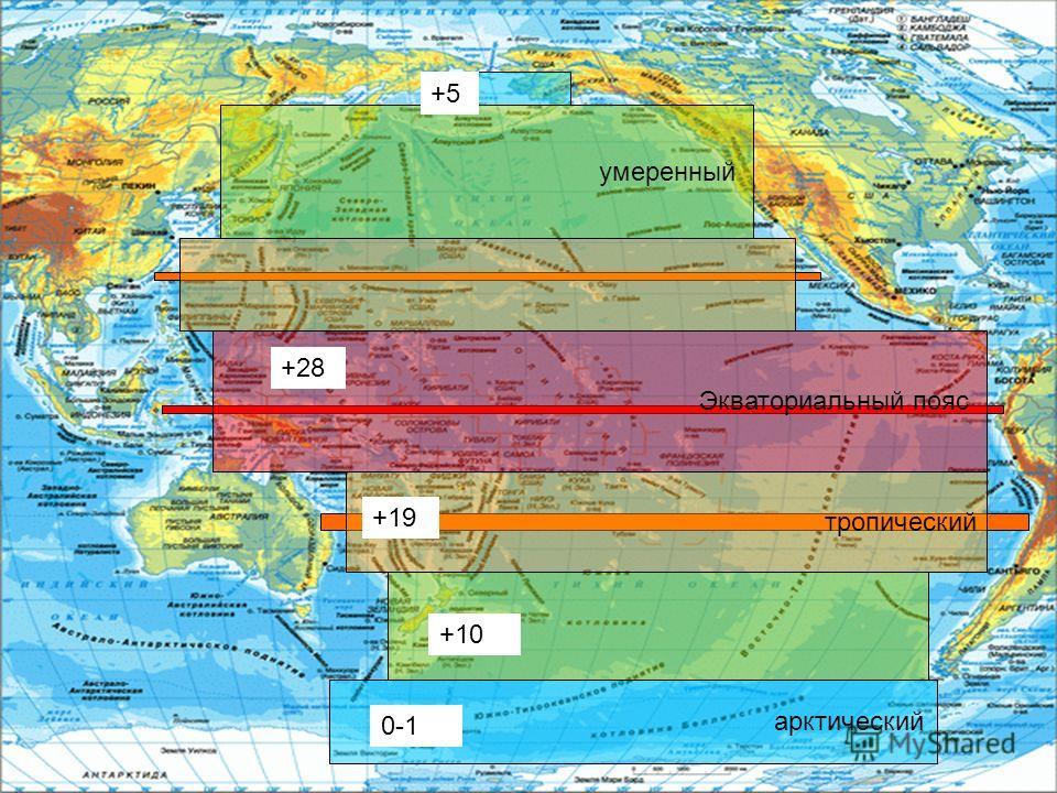 Экваториальный пояс тропический умеренный арктический +19 +28 +10 0-1 +5