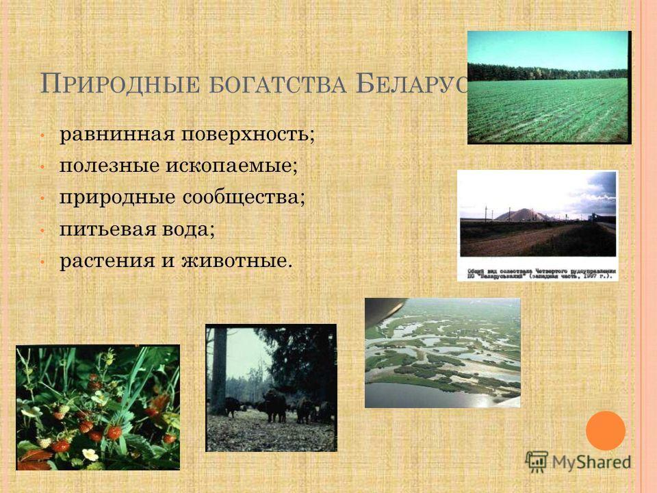 П РИРОДНЫЕ БОГАТСТВА Б ЕЛАРУСИ равнинная поверхность; полезные ископаемые; природные сообщества; питьевая вода; растения и животные.