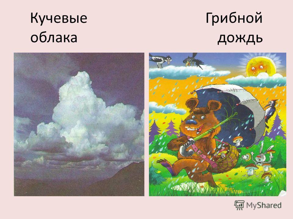 Кучевые Грибной облака дождь