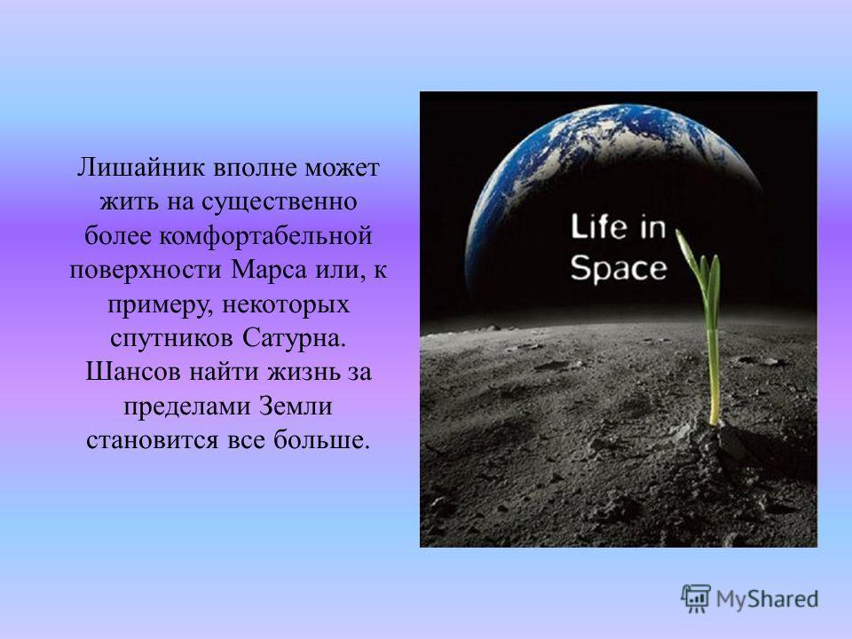 Лишайник вполне может жить на существенно более комфортабельной поверхности Марса или, к примеру, некоторых спутников Сатурна. Шансов найти жизнь за пределами Земли становится все больше.