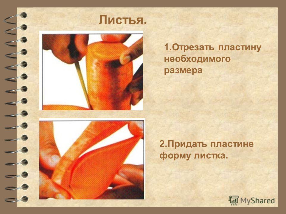 Листья. 1.Отрезать пластину необходимого размера 2.Придать пластине форму листка.
