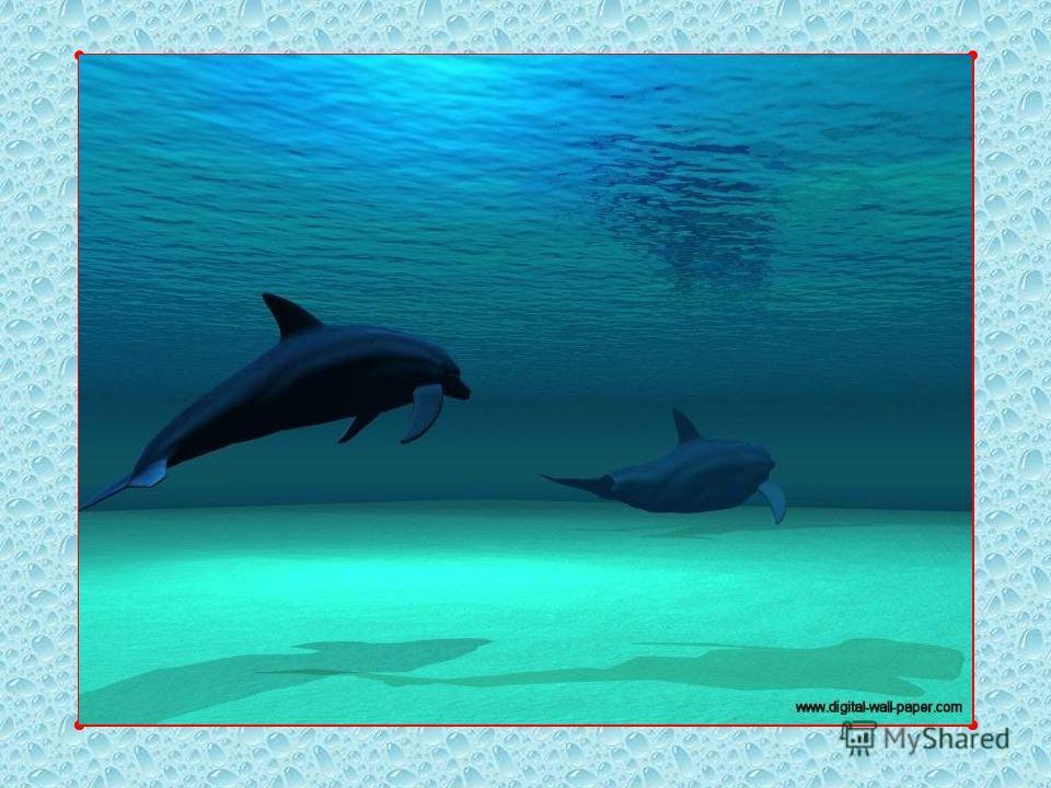Рассмотрите фотографии, изображающие морскую стихию в разных состояниях.