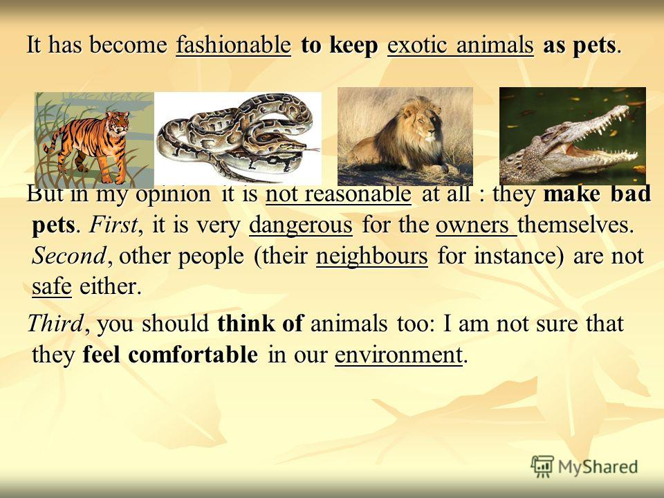 It has become fashionable to keep exotic animals as pets. It has become fashionable to keep exotic animals as pets. But in my opinion it is not reasonable at all : they make bad pets. First, it is very dangerous for the owners themselves. Second, oth