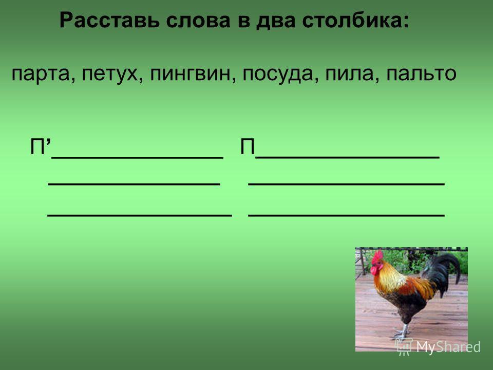 Расставь слова в два столбика: парта, петух, пингвин, посуда, пила, пальто П______________ П_______________ ______________ ________________ _______________ ________________