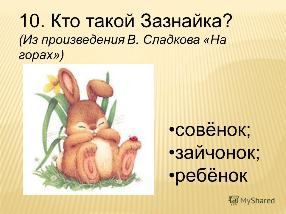 10. Кто такой Зазнайка? (Из произведения В. Сладкова «На горах») совёнок; зайчонок; ребёнок