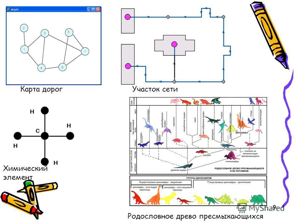 9 Карта дорогУчасток сети Химический элемент Родословное древо пресмыкающихся