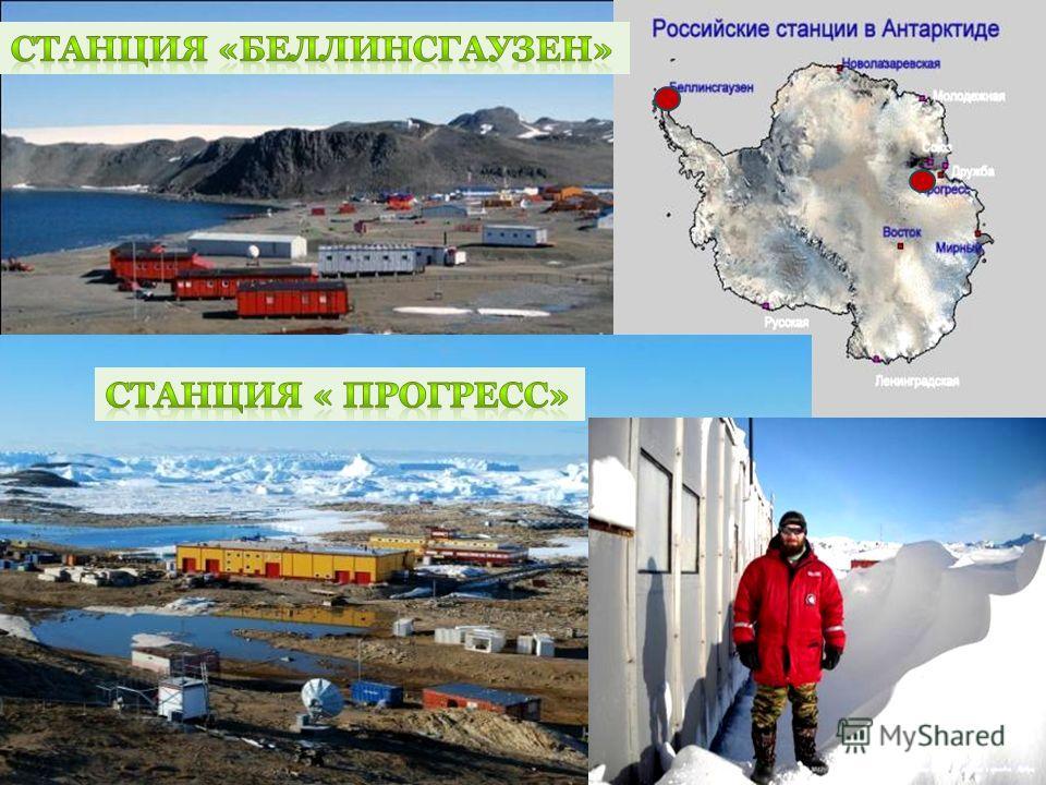 В 1968 году основана самая северная советская научная станция в Антарктиде Беллинсгаузен. Российские полярники часто называют станцию Беллинсгаузен «курортом», ведь, по сравнению с остальными арктическими станциями, здесь неприлично тепло круглый год