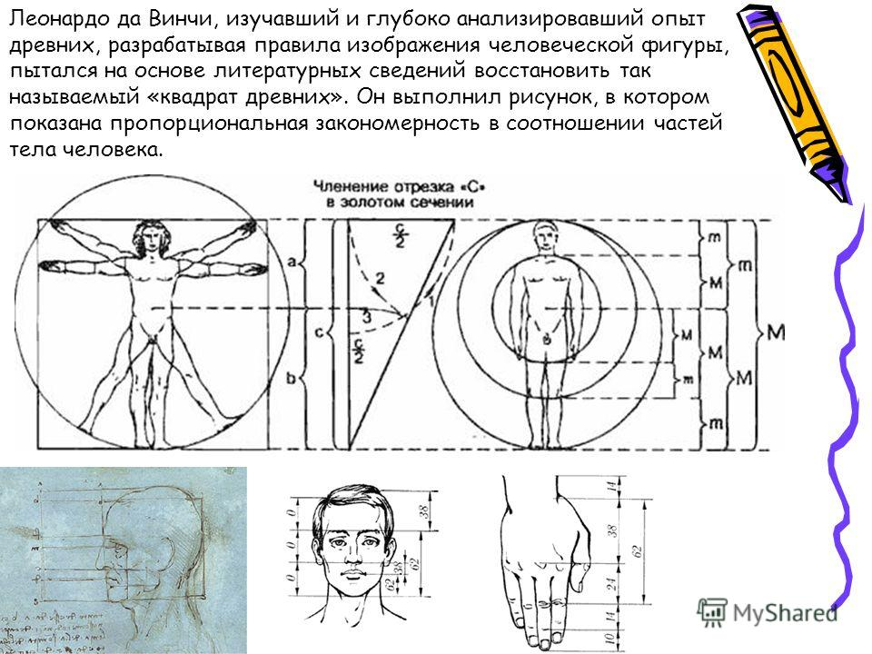 Леонардо да Винчи, изучавший и глубоко анализировавший опыт древних, разрабатывая правила изображения человеческой фигуры, пытался на основе литературных сведений восстановить так называемый «квадрат древних». Он выполнил рисунок, в котором показана