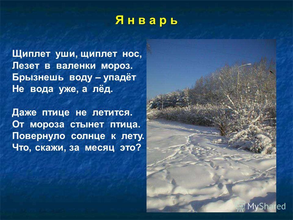 Я н в а р ь Щиплет уши, щиплет нос, Лезет в валенки мороз. Брызнешь воду – упадёт Не вода уже, а лёд. Даже птице не летится. От мороза стынет птица. Повернуло солнце к лету. Что, скажи, за месяц это?
