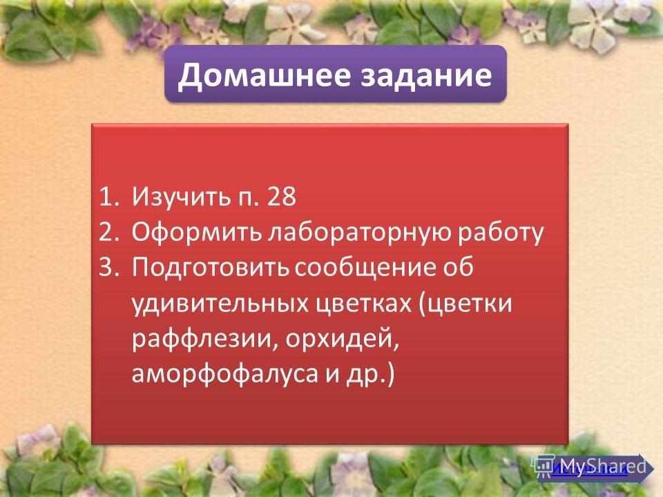 Домашнее задание 1.Изучить п. 28 2.Оформить лабораторную работу 3.Подготовить сообщение об удивительных цветках (цветки раффлезии, орхидей, аморфофалуса и др.) 1.Изучить п. 28 2.Оформить лабораторную работу 3.Подготовить сообщение об удивительных цве