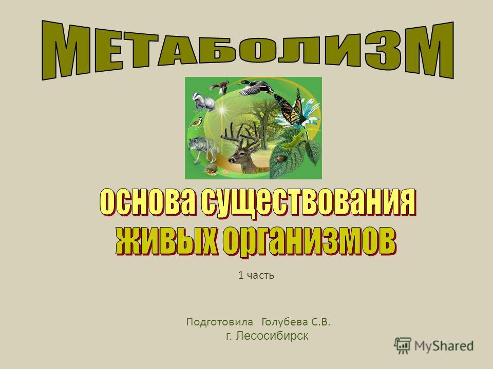 Подготовила Голубева С.В. г. Лесосибирск 1 часть