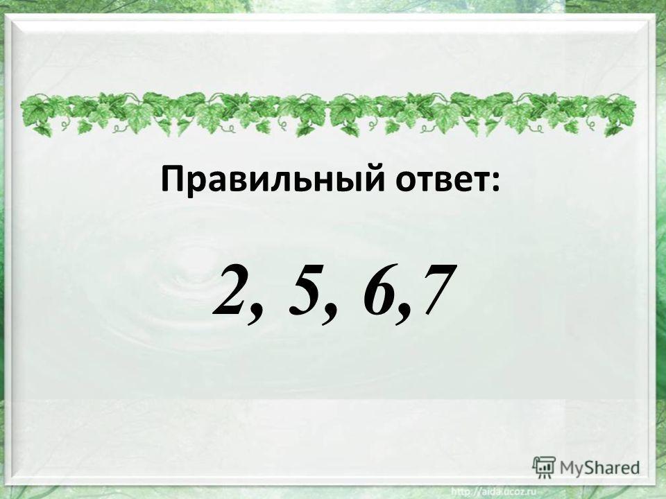Правильный ответ: 2, 5, 6,7