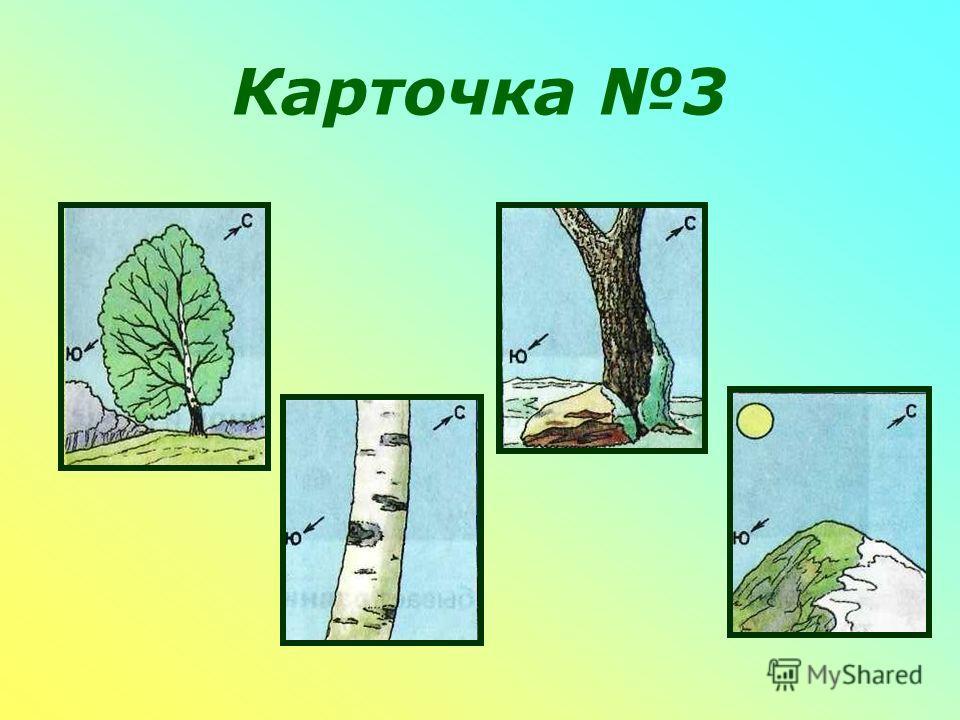 Карточка 3