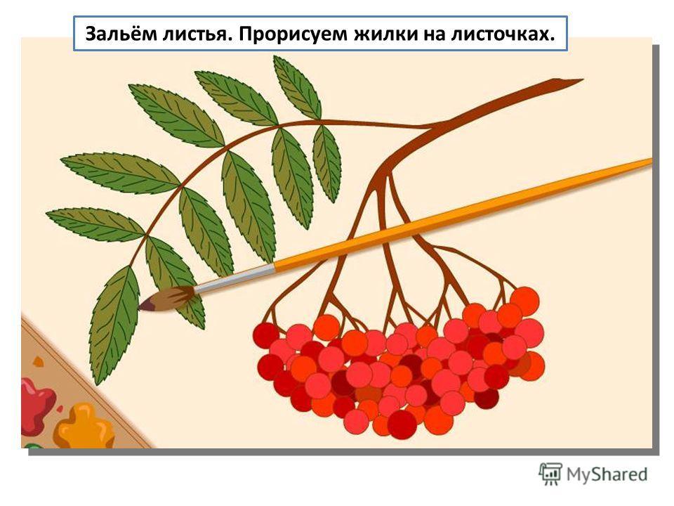 Зальём листья. Прорисуем жилки на листочках.