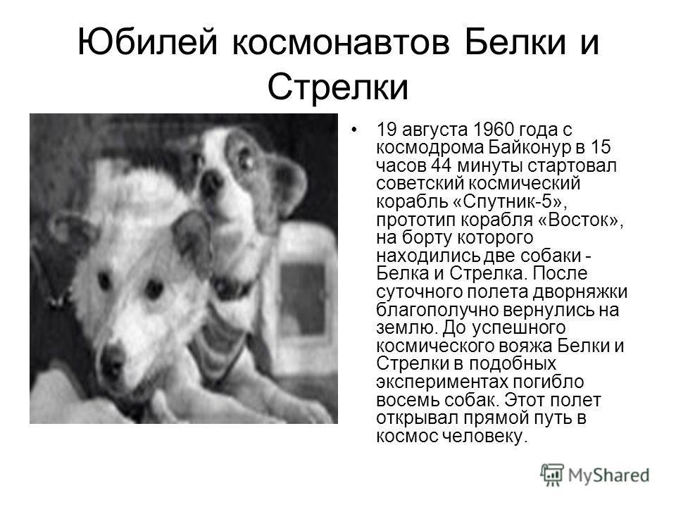Юбилей космонавтов Белки и Стрелки 19 августа 1960 года с космодрома Байконур в 15 часов 44 минуты стартовал советский космический корабль «Спутник-5», прототип корабля «Восток», на борту которого находились две собаки - Белка и Стрелка. После суточн