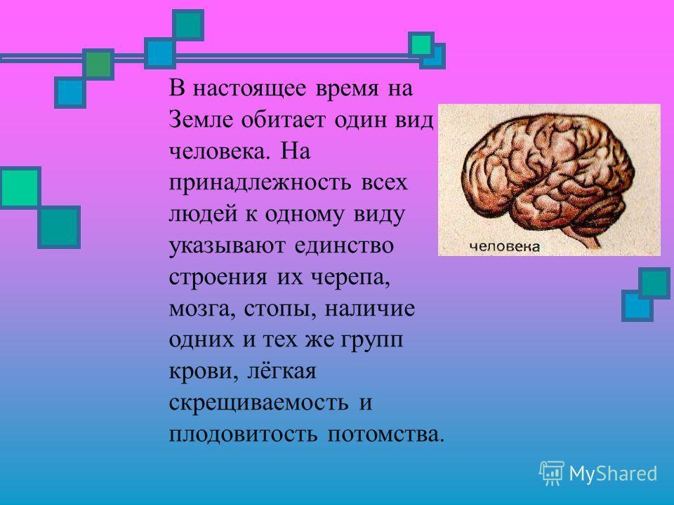 В настоящее время на Земле обитает один вид человека. На принадлежность всех людей к одному виду указывают единство строения их черепа, мозга, стопы, наличие одних и тех же групп крови, лёгкая скрещиваемость и плодовитость потомства.