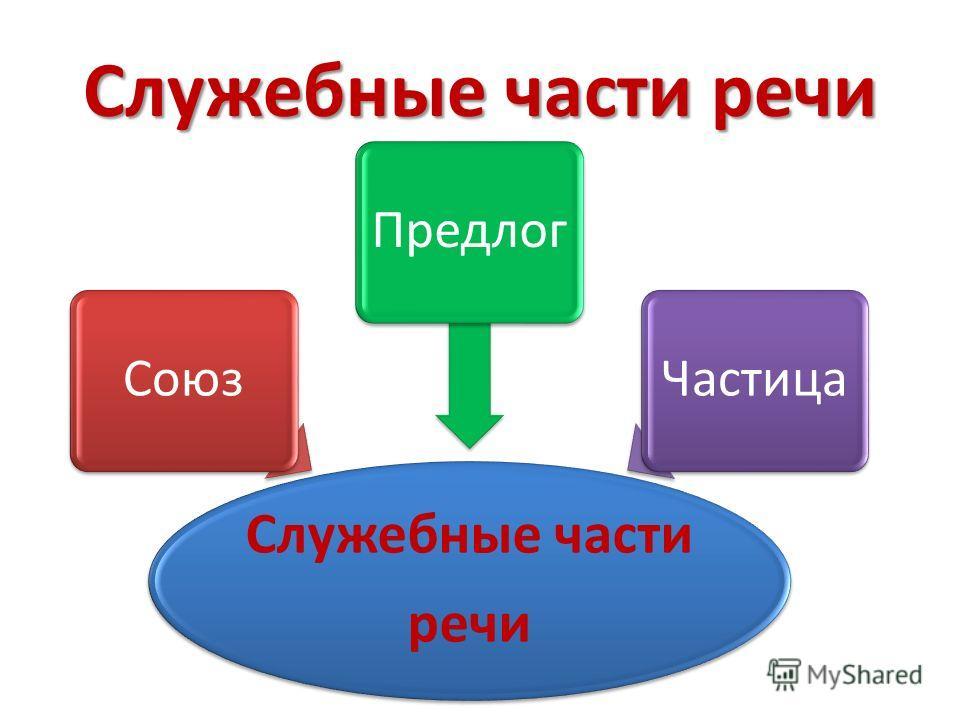 Служебные части речи Служебные части речи СоюзПредлогЧастица