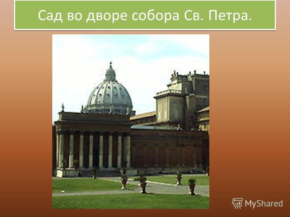 Сад во дворе собора Св. Петра.
