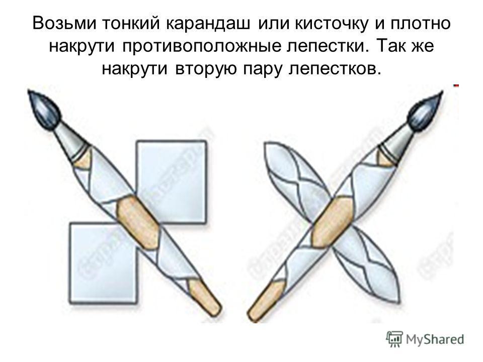 Возьми тонкий карандаш или кисточку и плотно накрути противоположные лепестки. Так же накрути вторую пару лепестков.