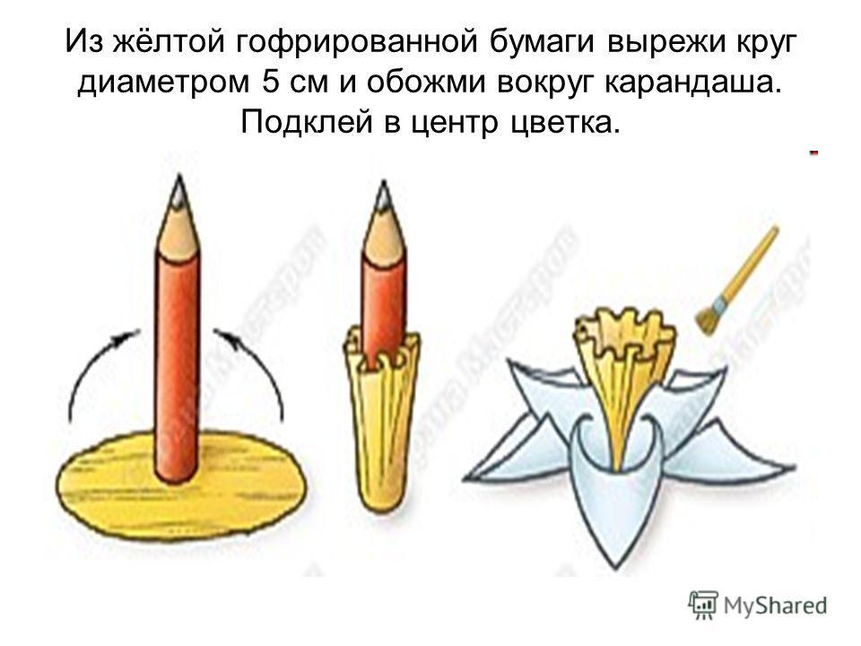 Из жёлтой гофрированной бумаги вырежи круг диаметром 5 см и обожми вокруг карандаша. Подклей в центр цветка.