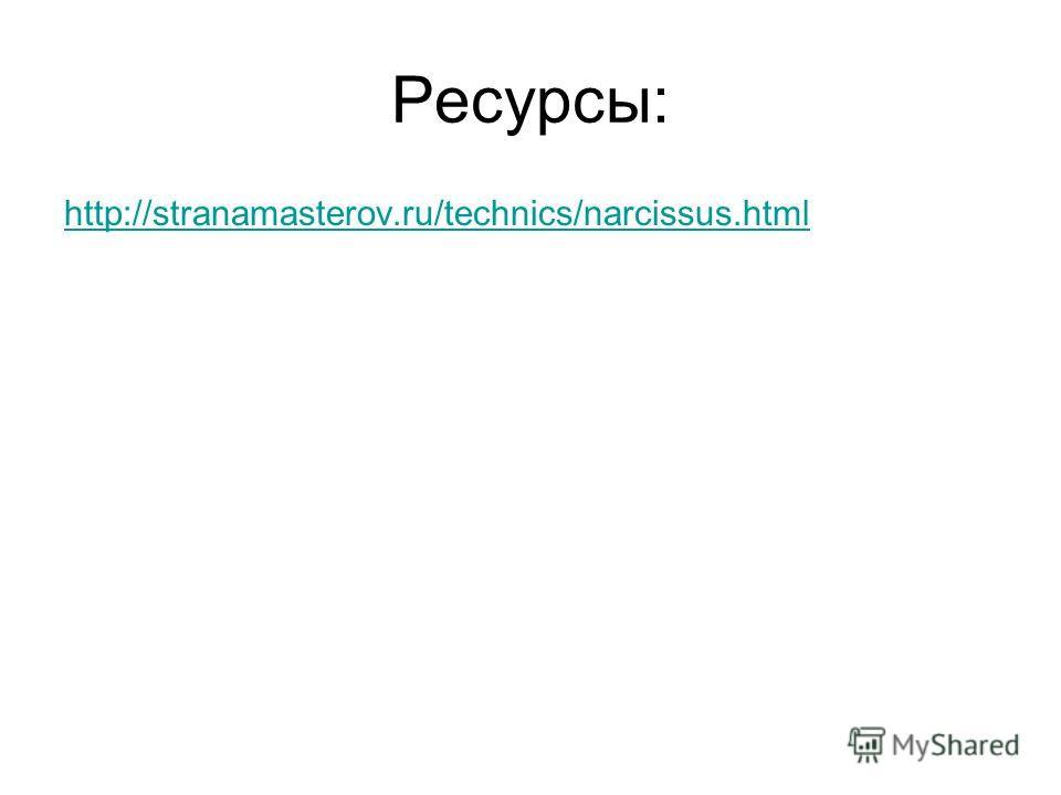 Ресурсы: http://stranamasterov.ru/technics/narcissus.html