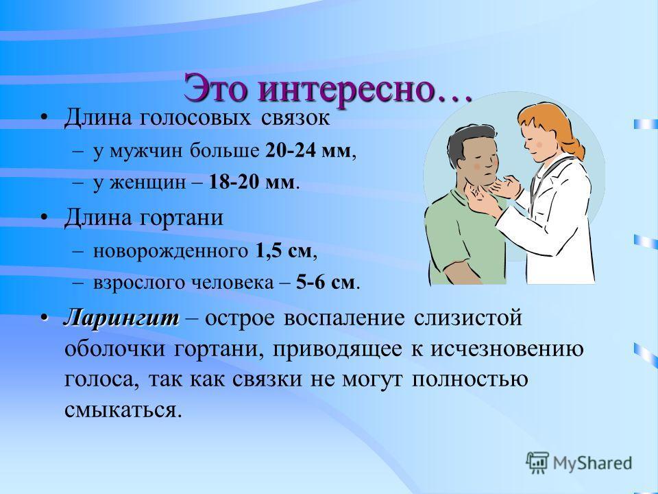 Это интересно… Длина голосовых связок –у мужчин больше 20-24 мм, –у женщин – 18-20 мм. Длина гортани –новорожденного 1,5 см, –взрослого человека – 5-6 см. ЛарингитЛарингит – острое воспаление слизистой оболочки гортани, приводящее к исчезновению голо