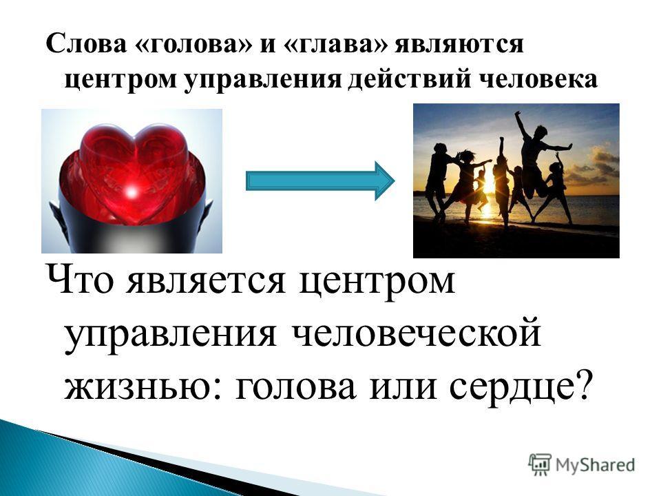 Слова «голова» и «глава» являются центром управления действий человека Что является центром управления человеческой жизнью: голова или сердце?