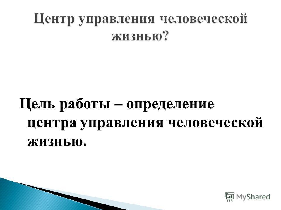 Цель работы – определение центра управления человеческой жизнью.