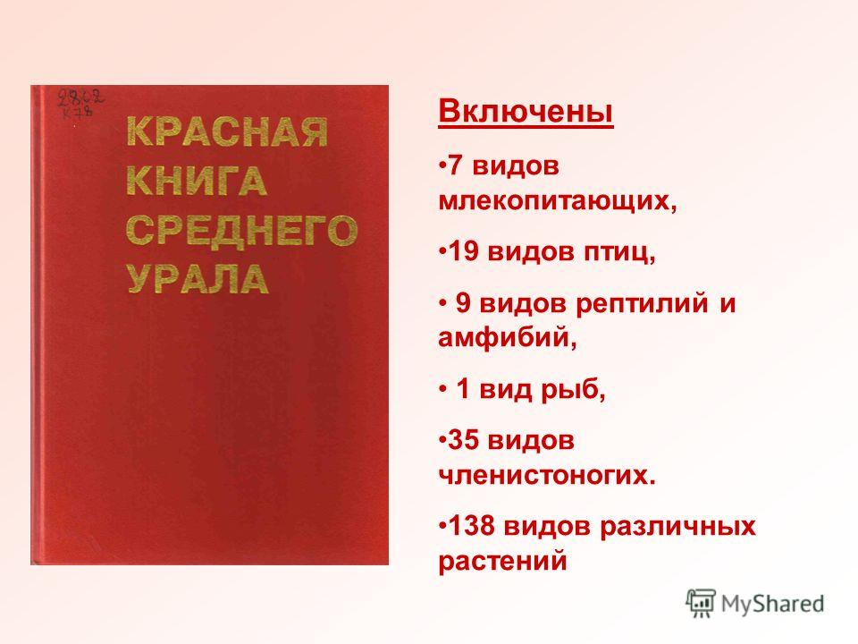 Животные красной книги урала фото