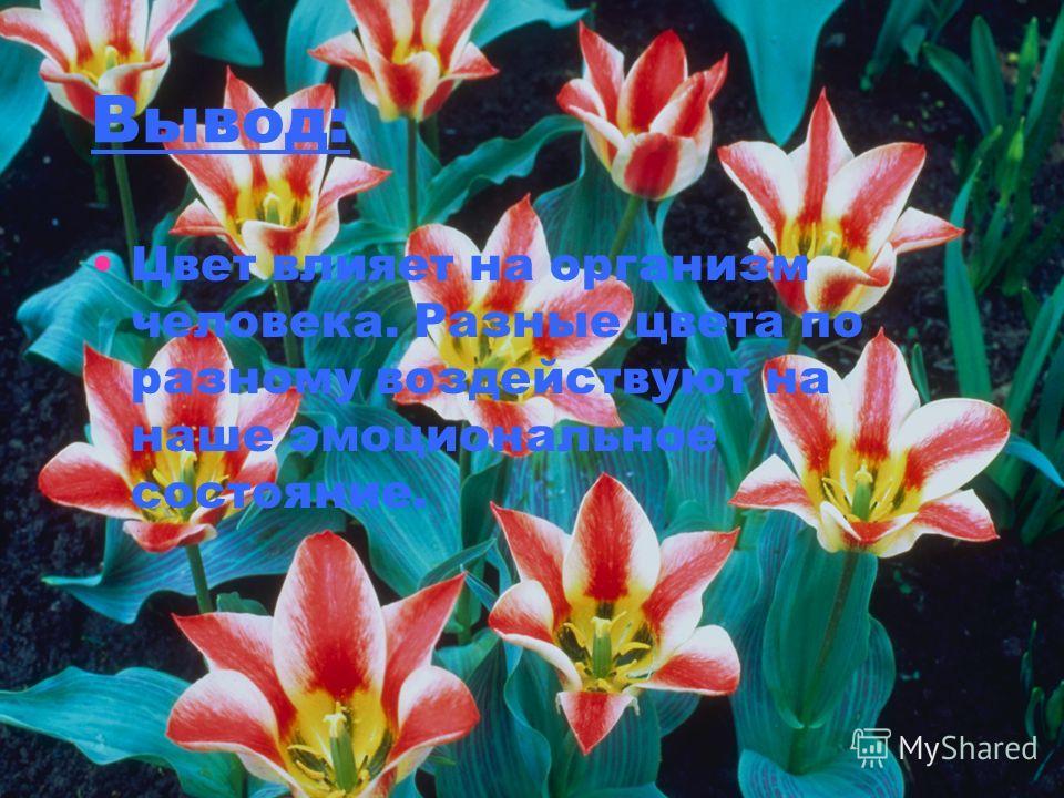 Вывод: Цвет влияет на организм человека. Разные цвета по разному воздействуют на наше эмоциональное состояние.