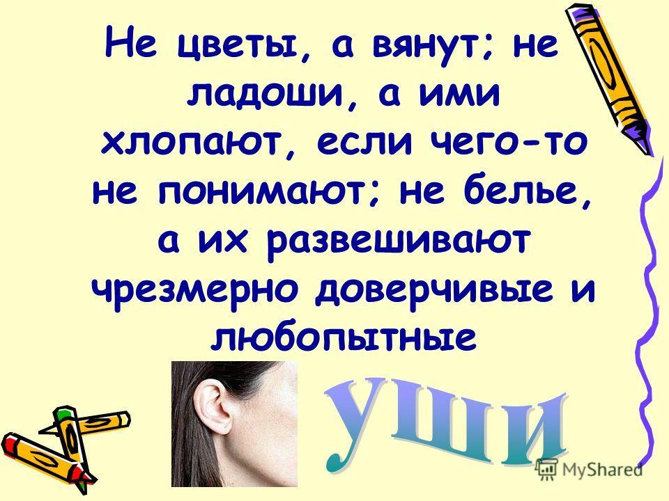 Его вешают, приходя в уныние, его задирают, зазнаваясь; его всюду суют, вмешиваясь не в свое дело