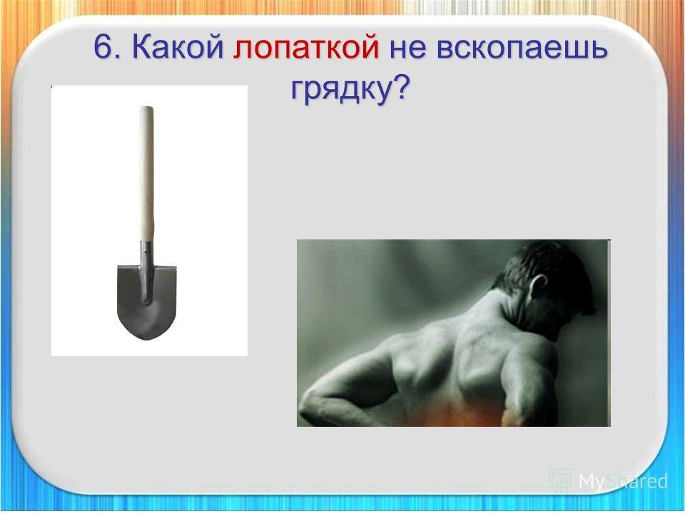 6. Какой лопаткой не вскопаешь грядку?