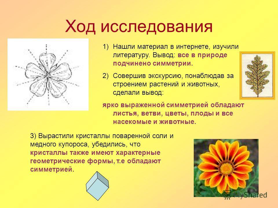 Ход исследования 1)Нашли материал в интернете, изучили литературу. Вывод: все в природе подчинено симметрии. 2)Совершив экскурсию, понаблюдав за строением растений и животных, сделали вывод: ярко выраженной симметрией обладают листья, ветви, цветы, п