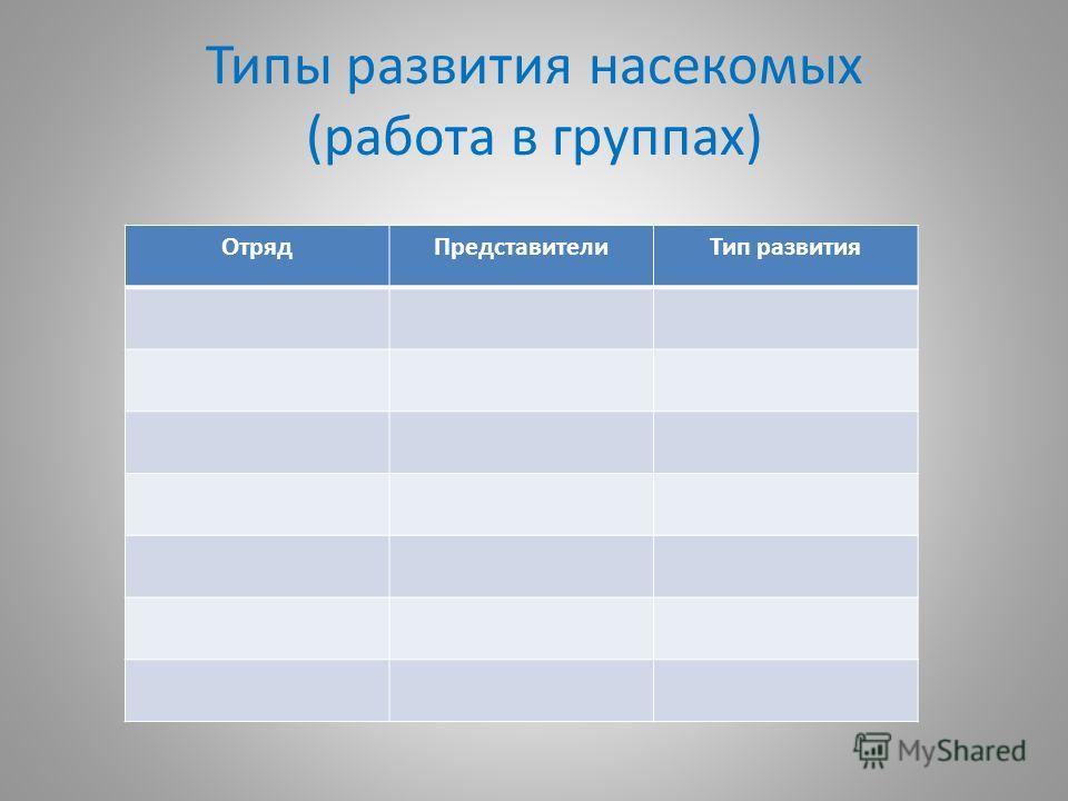 Типы развития насекомых (работа в группах) ОтрядПредставителиТип развития