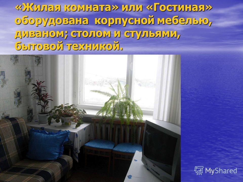 «Жилая комната» или «Гостиная» оборудована корпусной мебелью, диваном; столом и стульями, бытовой техникой.