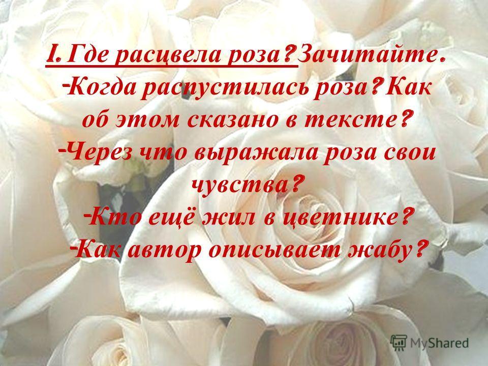 I. Где расцвела роза ? Зачитайте. - Когда распустилась роза ? Как об этом сказано в тексте ? - Через что выражала роза свои чувства ? - Кто ещё жил в цветнике ? - Как автор описывает жабу ?