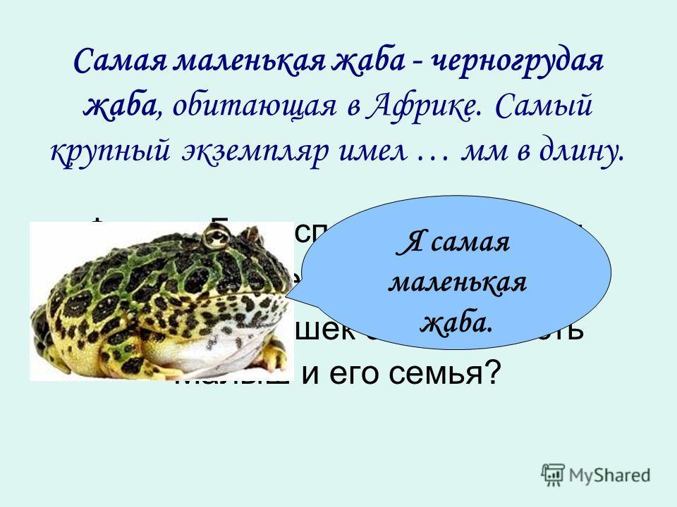 Самая маленькая жаба - черногрудая жаба, обитающая в Африке. Самый крупный экземпляр имел … мм в длину. Фрекен Бок испекла 96 плюшек. Карлсон съел всех плюшек. Сколько плюшек смогут съесть Малыш и его семья? Я самая маленькая жаба.