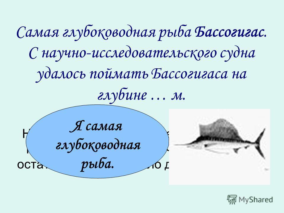 Самая глубоководная рыба Бассогигас. С научно-исследовательского судна удалось поймать Бассогигаса на глубине … м. Незнайка при делении некоторого числа на 7 получил неполное частное 1142, а остаток – 6. Какое число делил Незнайка? Я самая глубоковод