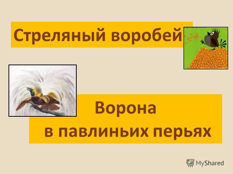 Стреляный воробей Ворона в павлиньих перьях