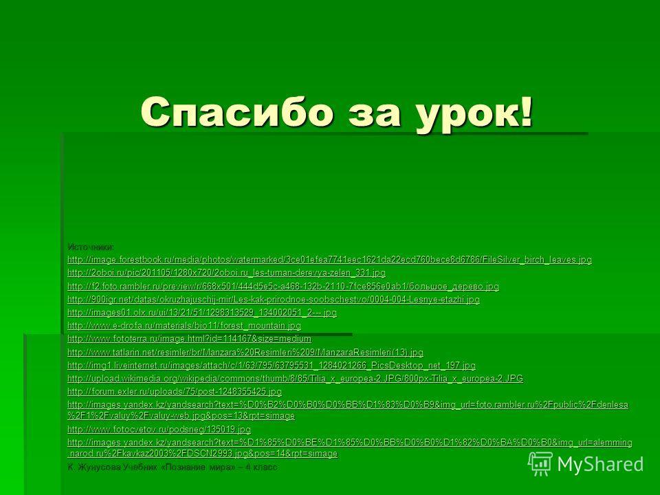 Спасибо за урок! Источники: http://image.forestbook.ru/media/photos/watermarked/3ce01efea7741eec1621da22ecd760bece8d6786/FileSilver_birch_leaves.jpg http://2oboi.ru/pic/201105/1280x720/2oboi.ru_les-tuman-derevya-zelen_331.jpg http://f2.foto.rambler.r