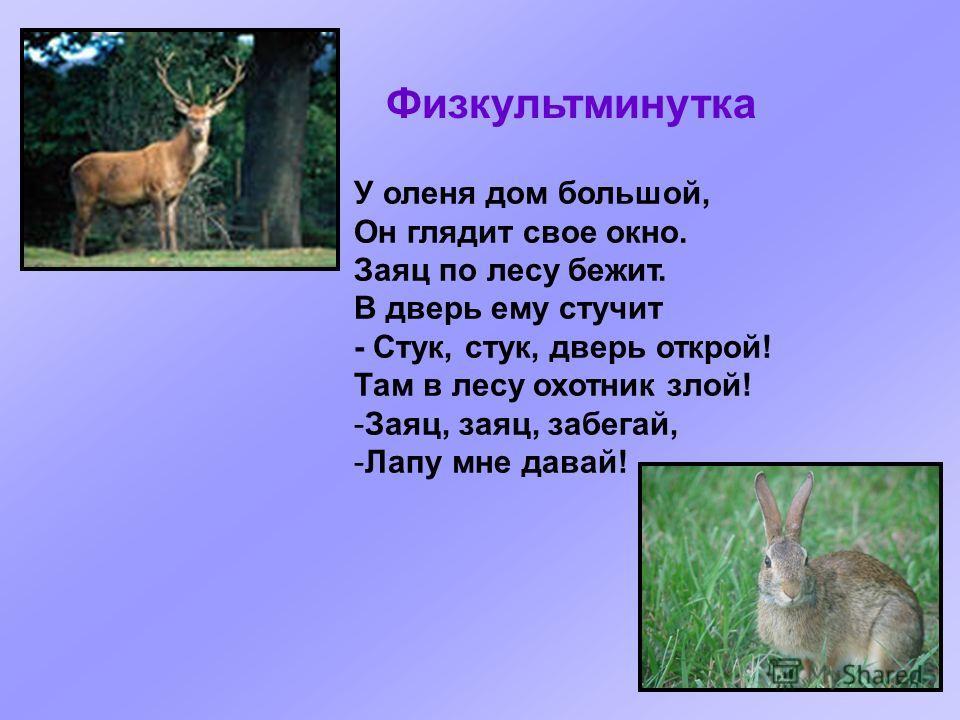 У оленя дом большой, Он глядит свое окно. Заяц по лесу бежит. В дверь ему стучит - Стук, стук, дверь открой! Там в лесу охотник злой! -Заяц, заяц, забегай, -Лапу мне давай! Физкультминутка