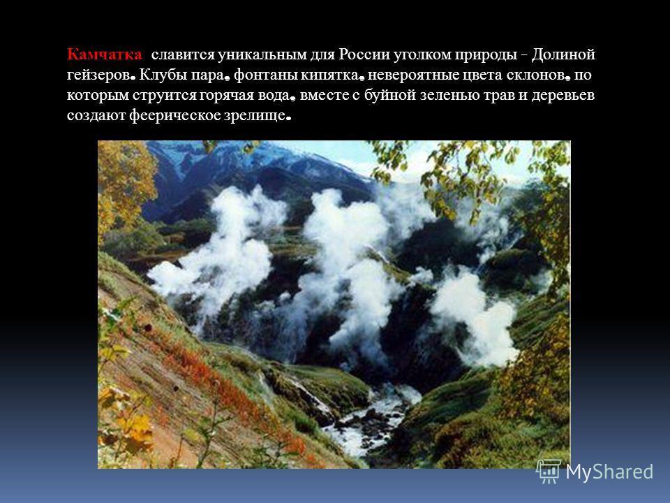 Камчатка славится уникальным для России уголком природы - Долиной гейзеров. Клубы пара, фонтаны кипятка, невероятные цвета склонов, по которым струится горячая вода, вместе с буйной зеленью трав и деревьев создают феерическое зрелище.
