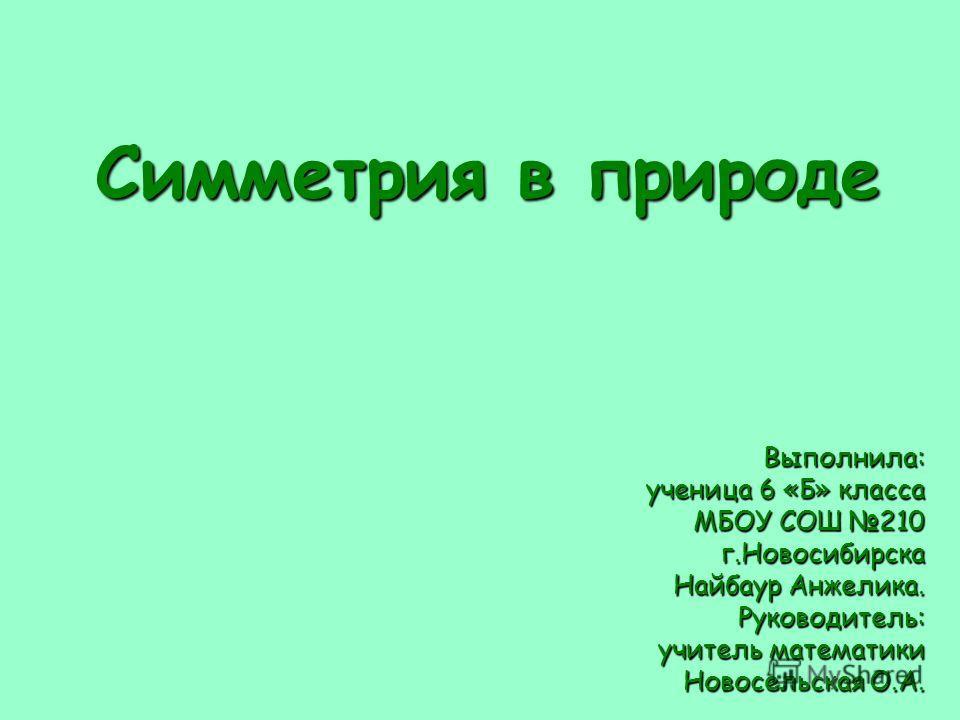 Симметрия в природе Выполнила: ученица 6 «Б» класса МБОУ СОШ 210 г.Новосибирска Найбаур Анжелика. Руководитель: учитель математики Новосельская О.А. г.Новосибирск 2010г.