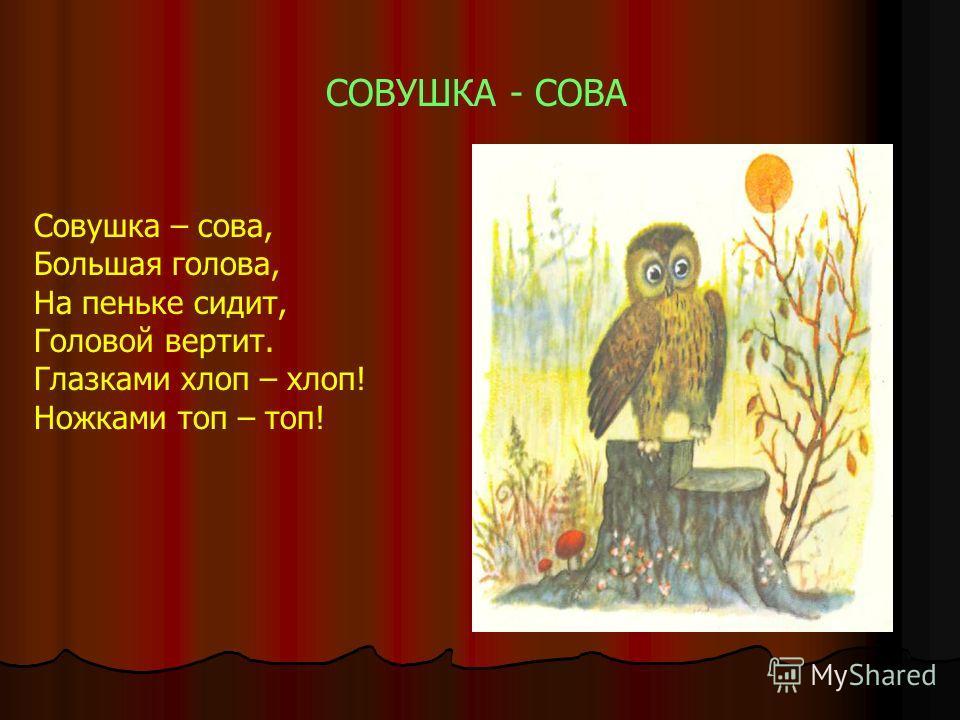 СОВУШКА - СОВА Совушка – сова, Большая голова, На пеньке сидит, Головой вертит. Глазками хлоп – хлоп! Ножками топ – топ!