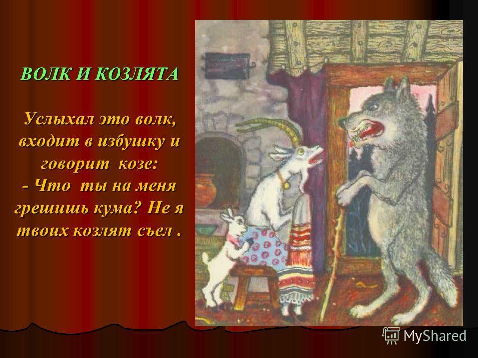 ВОЛК И КОЗЛЯТА Услыхал это волк, входит в избушку и говорит козе: - Что ты на меня грешишь кума? Не я твоих козлят съел.